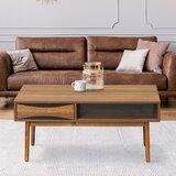 Plascencia Coffee Table with Storage by Corrigan Studio®