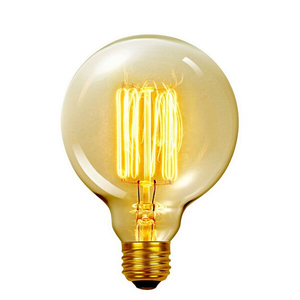 Vintage Edison 60 Watt (2700K) G40 Vanity Tungsten Incandescent Filament Light Bulb by Globe Electric Company