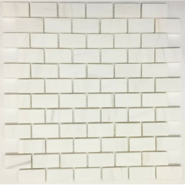1 x 2 Marble Subway Tile in Bianco Dolomite by Ephesus Stones