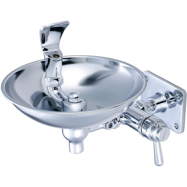 Wall Mounted Drinking Fountain by Central Brass