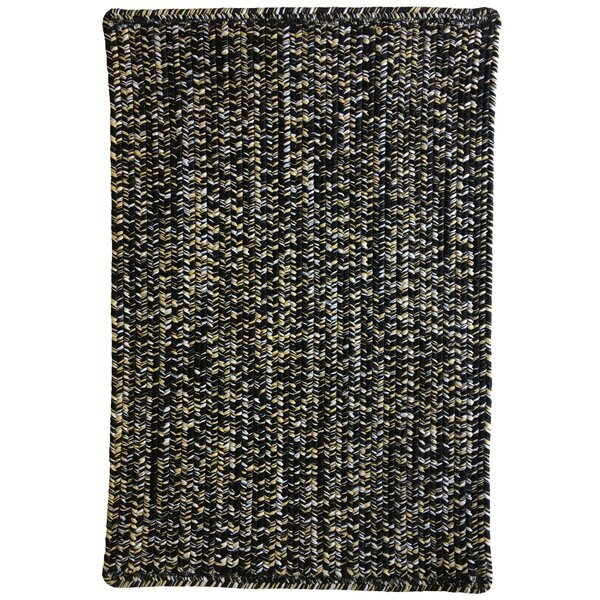 One-of-a-Kind Aukerman Hand-Braided Black Indoor/Outdoor Area Rug by Isabelline