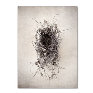 'Nest II' Photographic Print on Wrapped Canvas by Trademark Fine Art