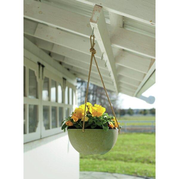 Napa Bowl Resin Hanging Planter by Novelty