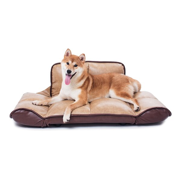 Crossover Dog Sofa with Folding Arms and Back by T