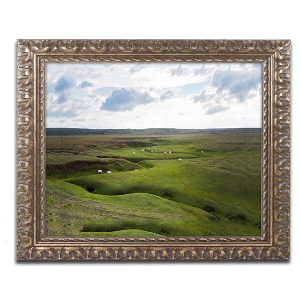 Available Light by Philippe Sainte-Laudy Framed Photographic Print by Trademark Fine Art