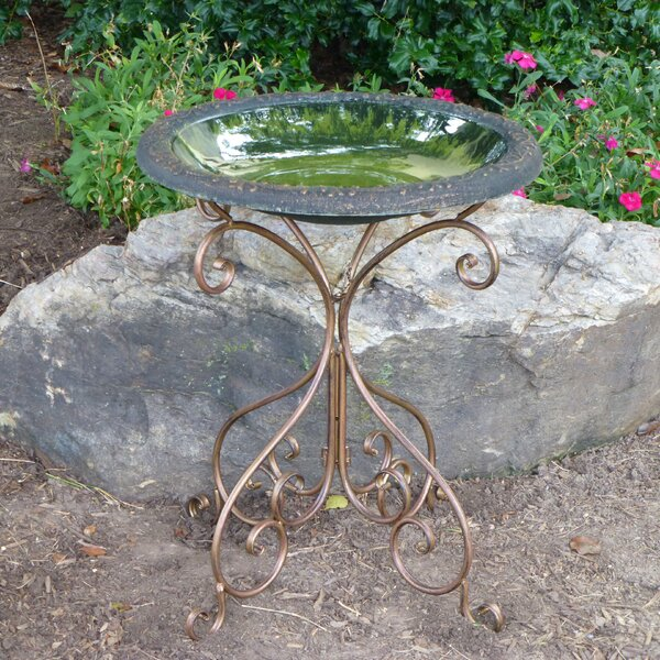 Gold Accent Gloss Birdbath by Tierra Garden