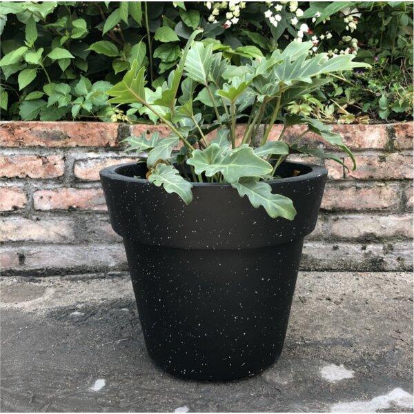 Nikhil Stackable Concrete Pot Planter by Charlton Home