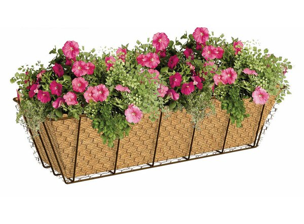 Metal Window Box Planter by Panacea Products