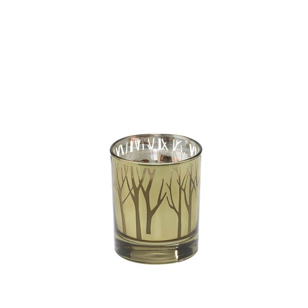 Woodland Crisp Night Air Scented Jar Candle by Alcott Hill
