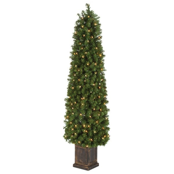 Potted Tower Tree Boxwood Floor Topiary in Pot by The Holiday Aisle