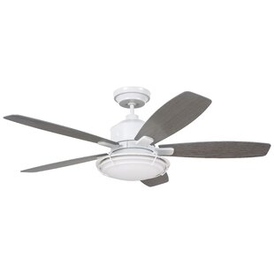 Order 54 Jeanine 5 Blade Outdoor Ceiling Fan By Longshore Tides
