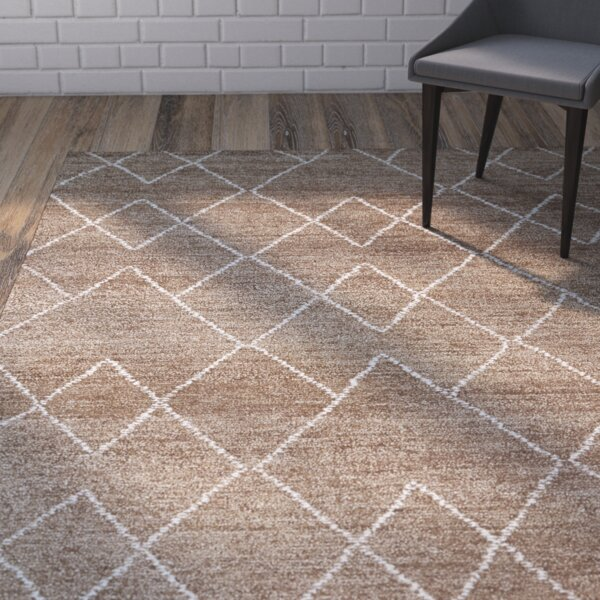 Aracely Hand Woven Brown/Ivory Area Rug by Mercury Row