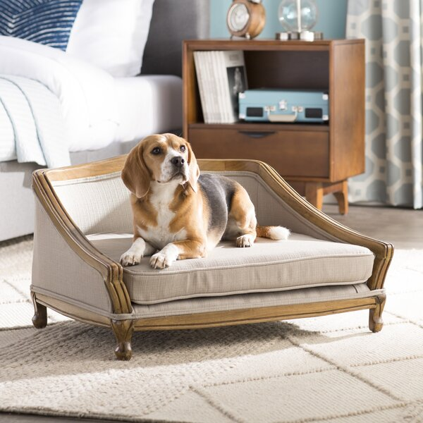Anita Sophisticated Decorative Dog Sofa with Arched Wood Frame by Archie & Oscar
