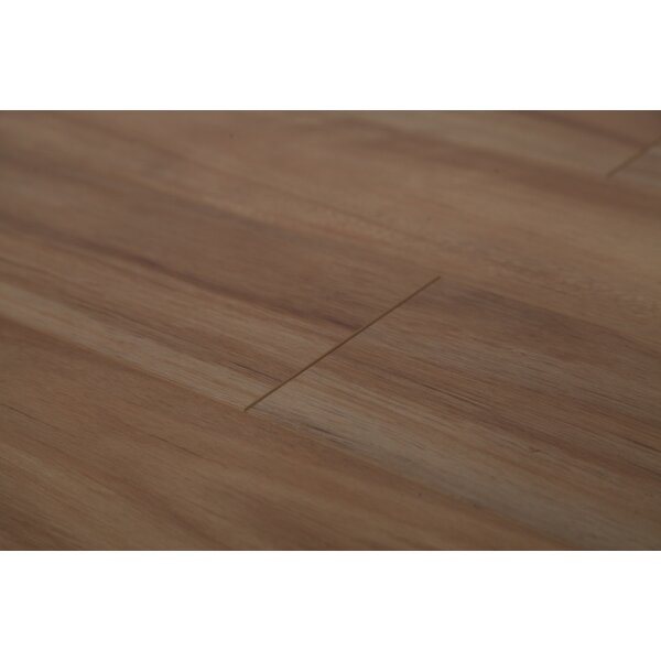 Lucency 47.85 x 4.96 x 12mm Laminate Flooring in Golden Eucalyptus by Dekorman