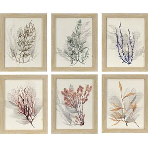 'Sea Grass' 6 Piece Framed Graphic Art Set by Rosecliff Heights