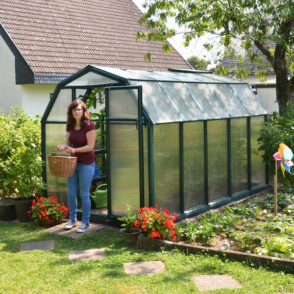 EcoGrow 2 Twin Wall 6 Ft. W x 10 Ft. D Greenhouse by Rion Greenhouses