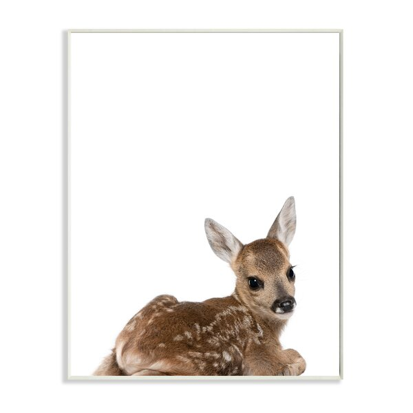 Baby Fawn Studio Photo Wall Plaque by Stupell Industries