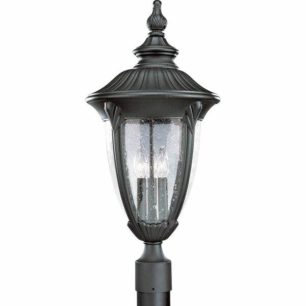 Triplehorn 1-Light Lantern Head in Black by Alcott Hill