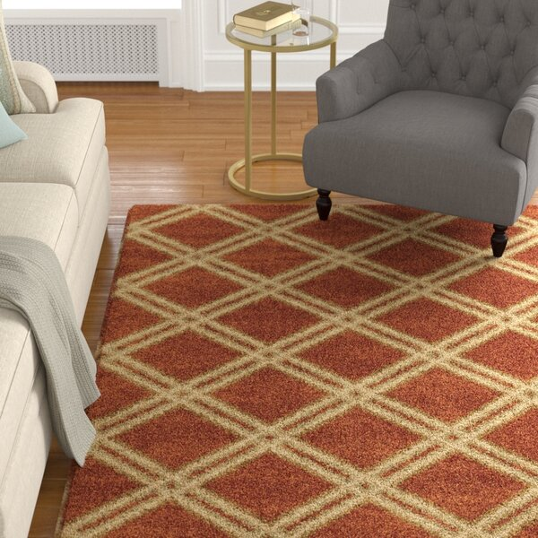Menominee Shag Burnt Orange Area Rug by Darby Home Co