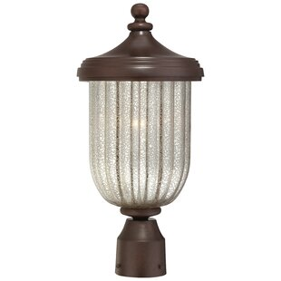 Purchase Solara Hills 1-Light Lantern Head By Great Outdoors by Minka