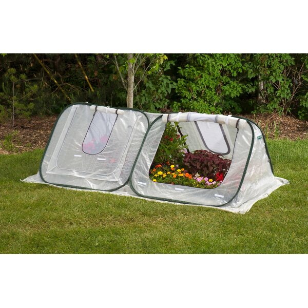 StarterHouse 8 Ft. W x 4 Ft. D Mini Greenhouse by Flowerhouse