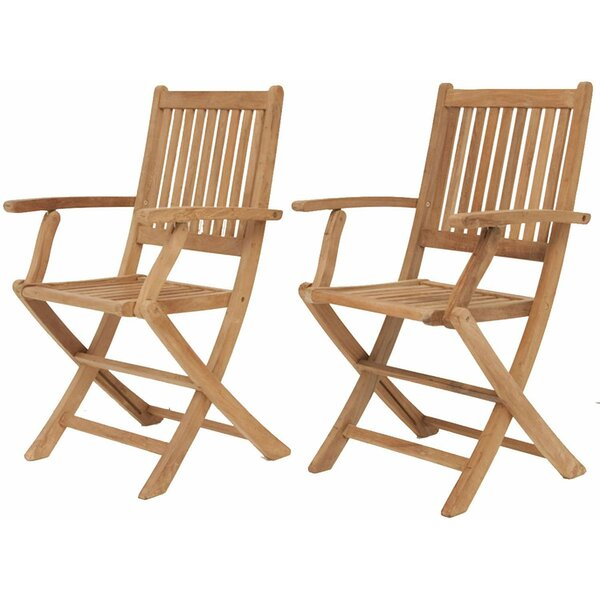 Caius Folding Teak Patio Dining Chair (Set of 2) by Longshore Tides