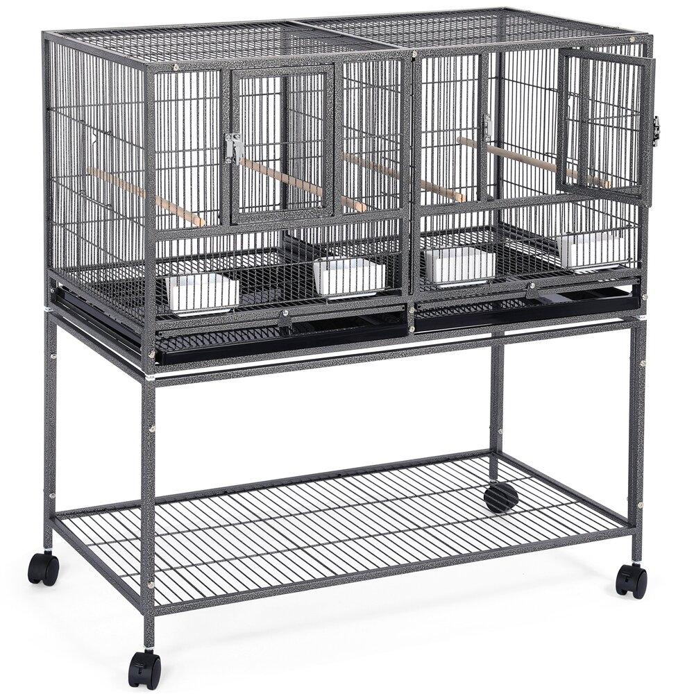 Tucker Murphy Pet Gabler 41 5 Iron Flat Top Floor Bird Cage With Wheels Wayfair