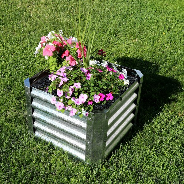 Haight Square Galvanized Steel Planter Box by Williston Forge