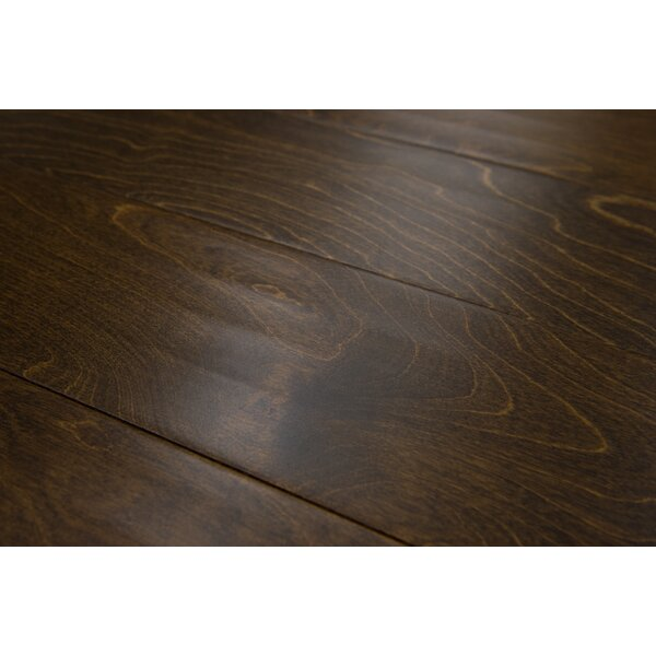 Bern 5 Engineered Birch Hardwood Flooring in Coffee by Branton Flooring Collection