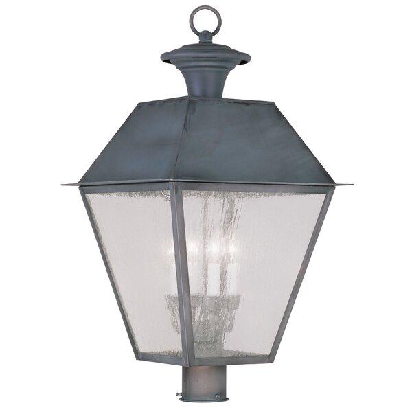 Cynda Outdoor 4-Light Lantern Head by Darby Home Co