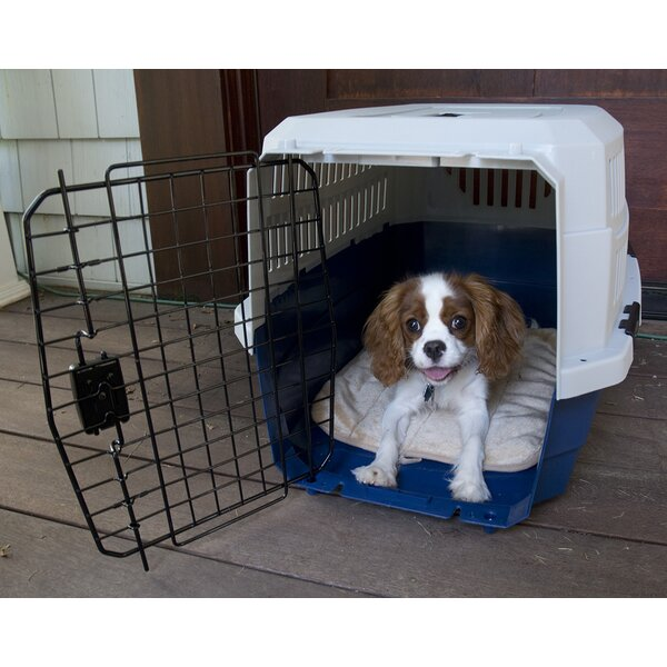 Pawings Transport Pet Crate by Iconic Pet