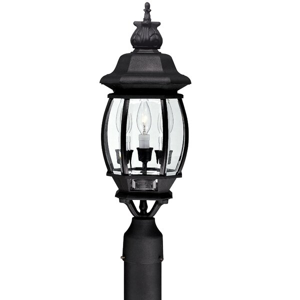 Herkimer Outdoor 3-Light Lantern Head by Alcott Hill