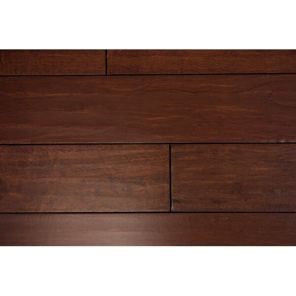 Tropea 4-1/2 Solid Hardwood Flooring in Raisin by Branton Flooring Collection