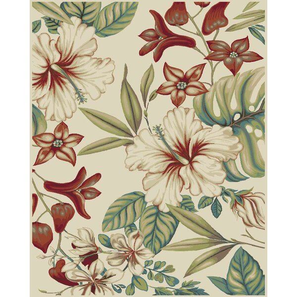 Brookwood Multi Area Rug by Mayberry Rug