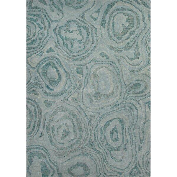 National Geographic Home Premium Wool Hand Tufted Blue Area Rug by National Geographic Home