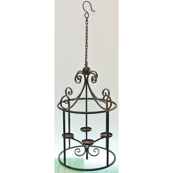 Pauline Metal Lantern by TLC Home