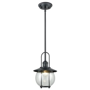 Deals Andrew 1-Light Outdoor Pendant By Breakwater Bay