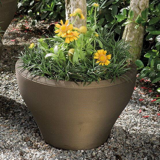 Juno Plastic Pot Planter by Crescent Garden