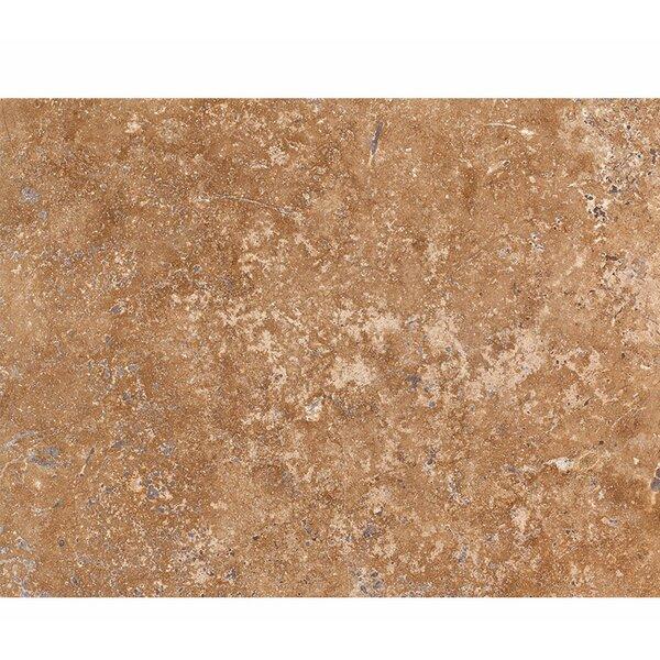 16 x 24 Travertine Field Tile in Walnut Honed by Parvatile