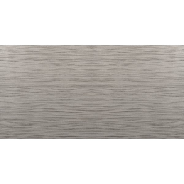 Thread 12 x 24 Porcelain Field Tile in Gray by Emser Tile