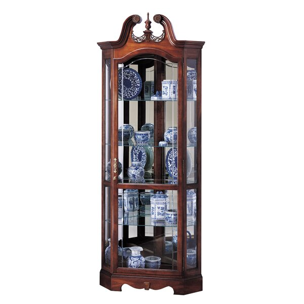 Bridgeman Curio Cabinet by Darby Home Co