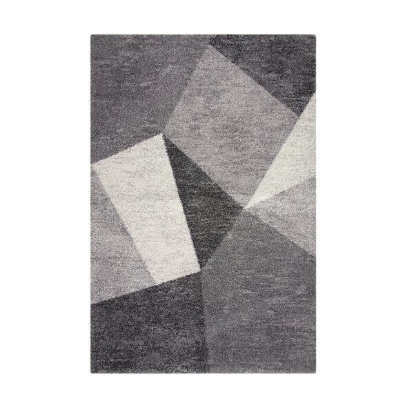 Teasley Gray Area Rug by Brayden Studio