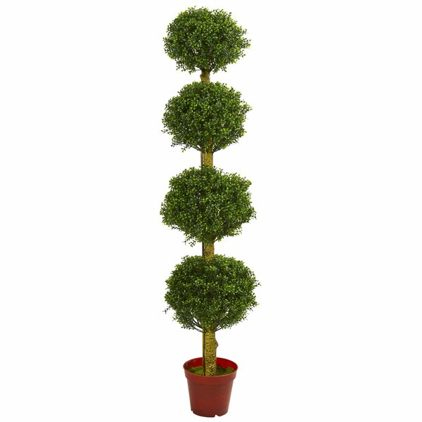 Four Tier Boxwood Topiary by Fleur De Lis Living