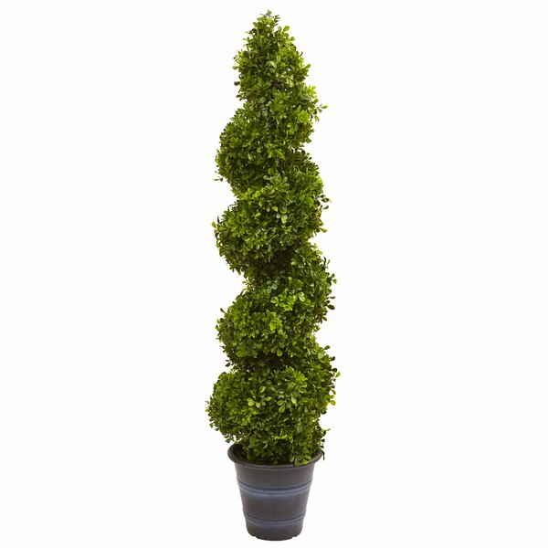 Boxwood Spiral Topiary in Planter by Nearly Natural