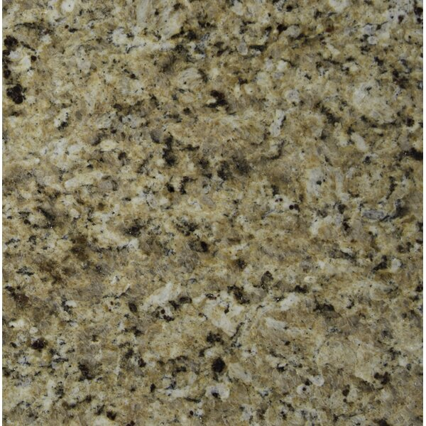 12 x 12 Granite Field Tile in New Venetian Gold by MSI
