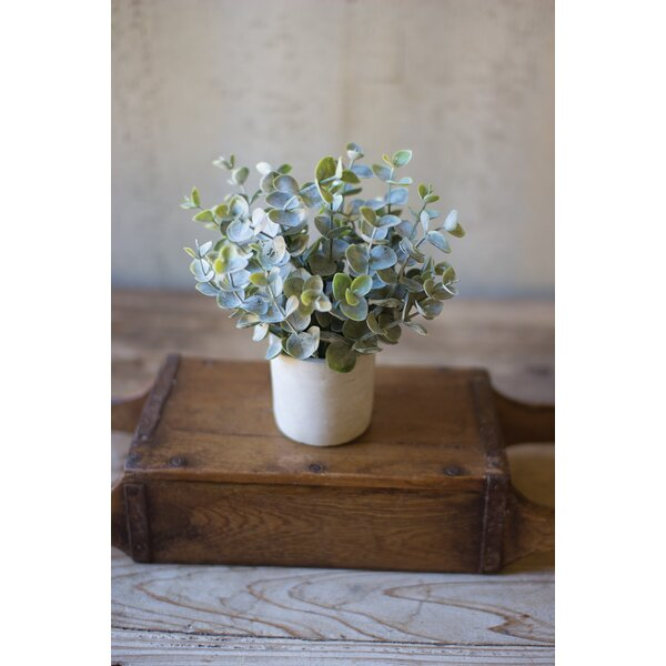 Artificial Desktop Boxwood Plant in Cement Pot by Wrought Studio