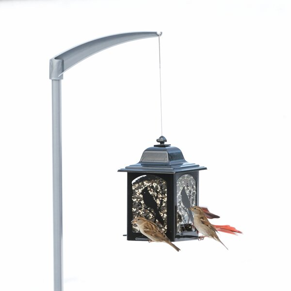 Universal Bird Feeder Pole by Perky Pet