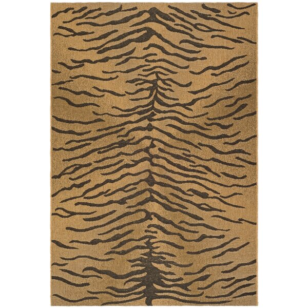 Catori Dark Brown/Natural Outdoor Rug by World Menagerie