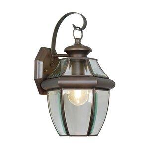 Gustavson 1-Light Outdoor Wall Lantern