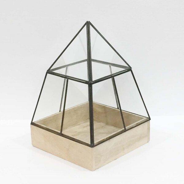 Hesperia Pyramid Glass Terrarium by Gracie Oaks